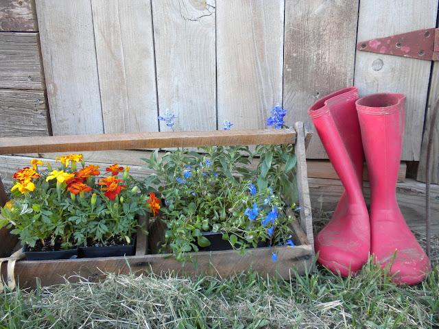 Gather World Naked Gardening Day