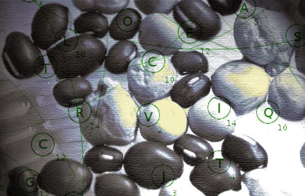 EU To Ban Heirloom Seeds and Criminalize Unregistered Gardens Registered-seeds