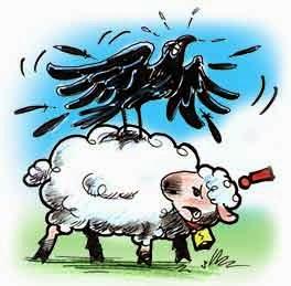 El aguila, el cuervo y el pastor