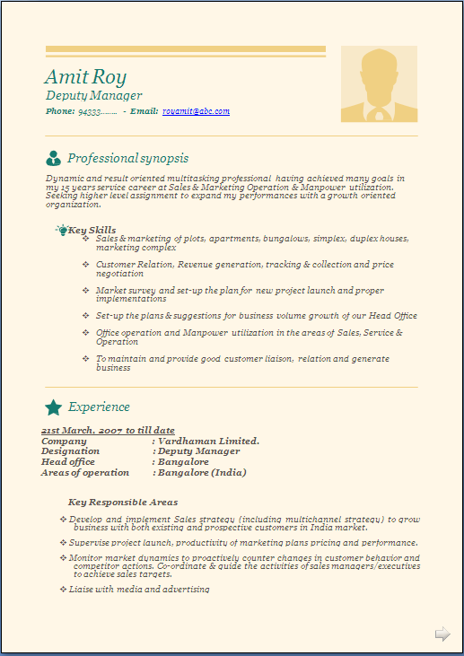 professional beautiful resume sample doc experienced and freshers - Resume Freshers Format