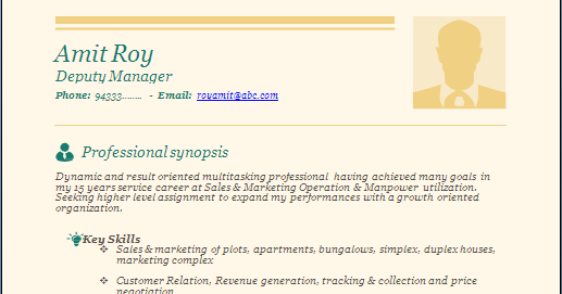 resume formats  professional  u0026 beautiful resume sample doc