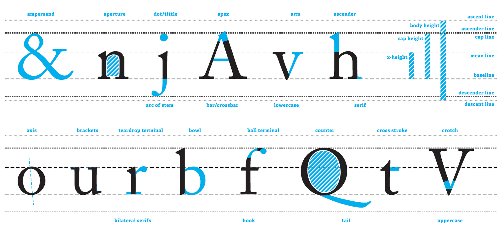 What is a Line: Anatomy of Type | Design Context