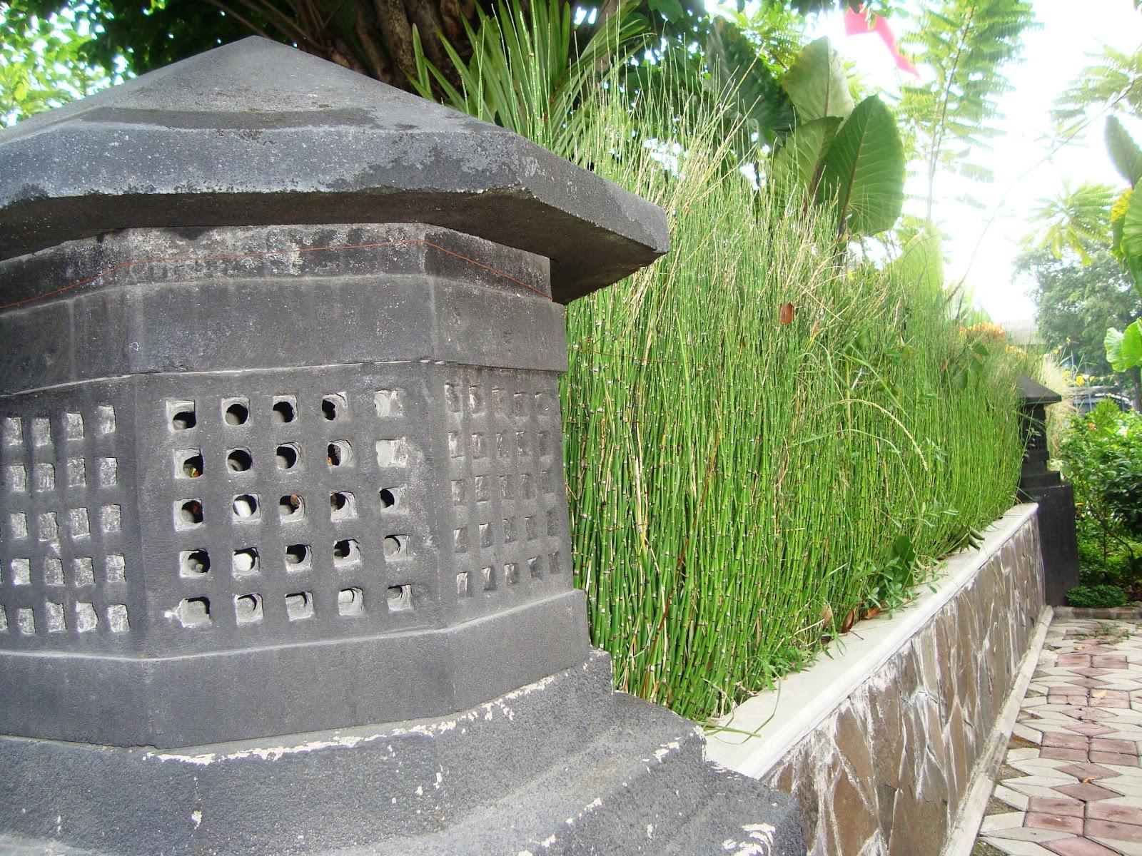 Kumpulan Desain Dinding Taman Depan Rumah Terbaru