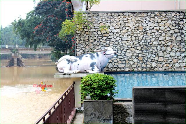 Luta resort Rantepao Toraja,