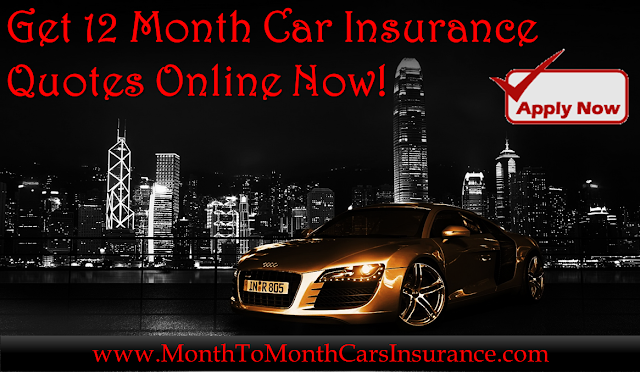 Best 12 Month Car Insurance Policies