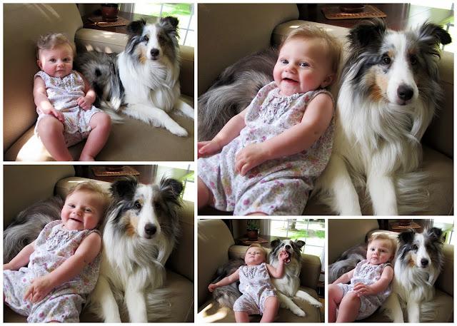 Stella & Her Dog