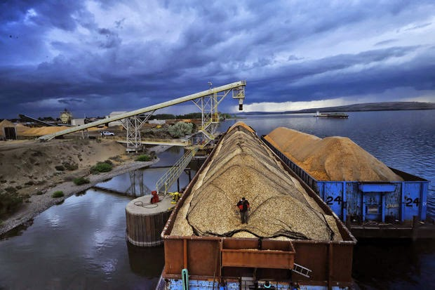 A terminal to export 8.8 million tons of coal annually has been proposed at the Port of Morrow at Boardman. But a slump in coal prices is leaving it and two other export projects looking financially shaky.  (Credit: Jamie Francis/The Oregonian) Click to enlarge.
