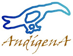 Fundación AndígenA