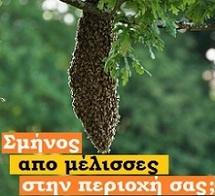 http://melissokomianet.gr/sminos-apo-melisses/