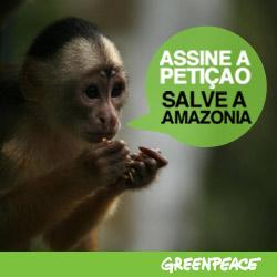 Salve a Amazônia!!