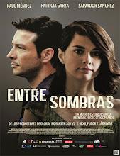 Entre sombras (2013) [Latino]