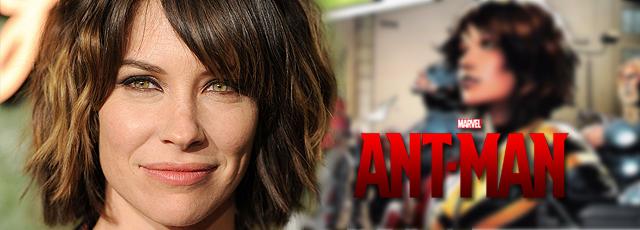 Evangeline Lilly negocia para actuar en Ant-Man (El Hombre Hormiga)