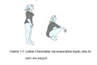 Kehamilan 35 Minggu : Latihan Menurunkan Dan Memasukkan Kepala Janin Ke pintu Atas Panggul