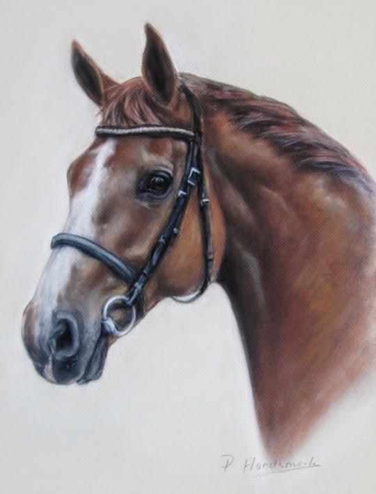 paardenportret, paardenschilderij, paardenschilder, paardenschilderes, paardenhoofd in pastel, paardenportret in opdracht