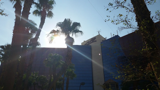 Las Vegas 2015 --Part Two:  My Favorite Spot At The Rio All Suites Hotel --How Did I Get Here? My Amazing Genealogy Journey
