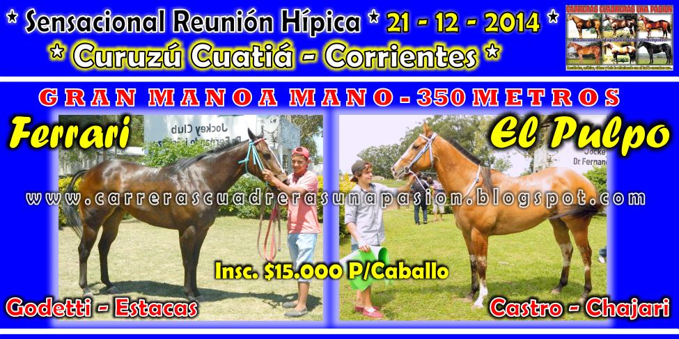 C. CUATIA - CLASICO 350 II