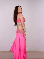 Sneha Ullal Glamorous in Pink Photo shoot-cover-photo