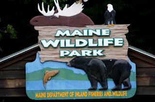 Maine Wildlife Park sign