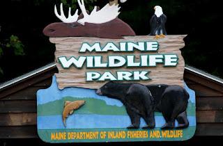 Maine Wildlife Park sign