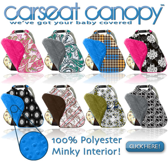 FREE Minky Carseat Cover