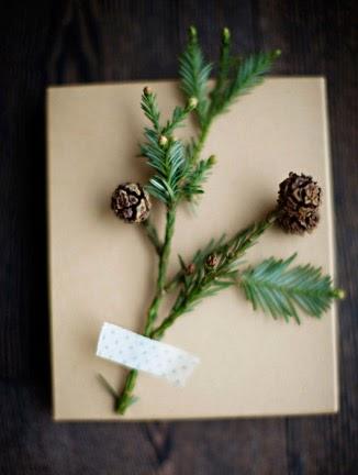 Bits of pine