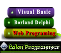 Calon Programer