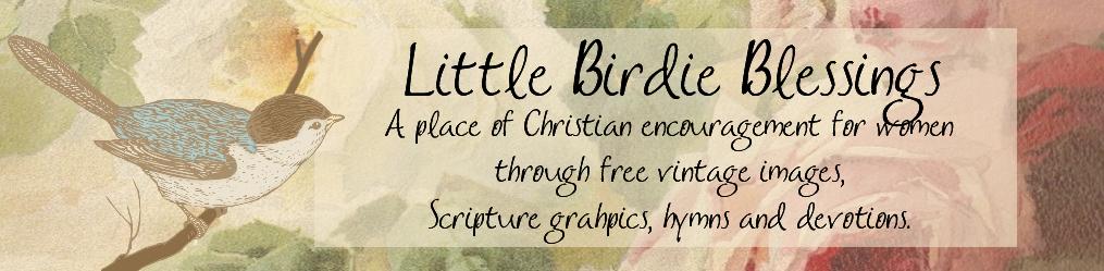 Little Birdie Blessings