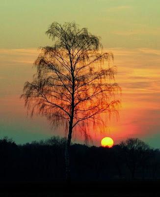 Un lindo amanecer más allá de las montañas