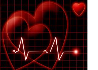 cardiovascular1.jpg