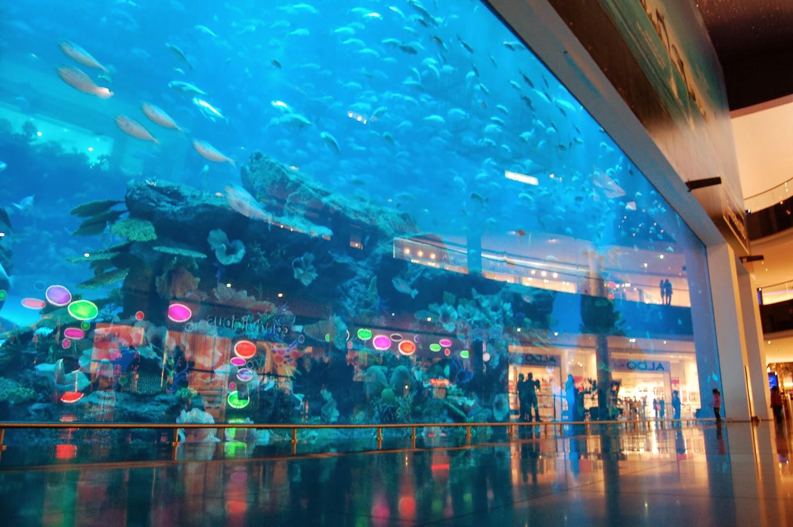 hydropolis underwater resort hotel underwater hotel room dubai