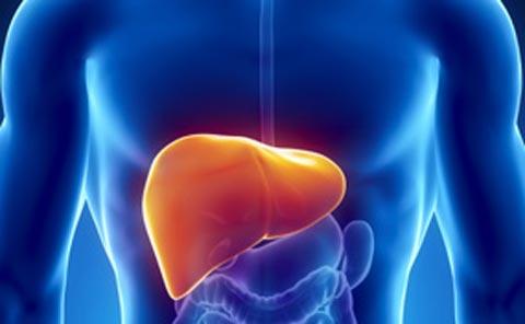 penyakit-hepatitis-a