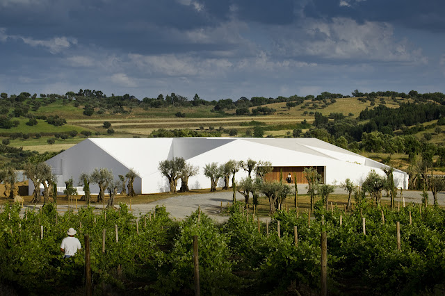 Picture of modern white building built in the vineyards