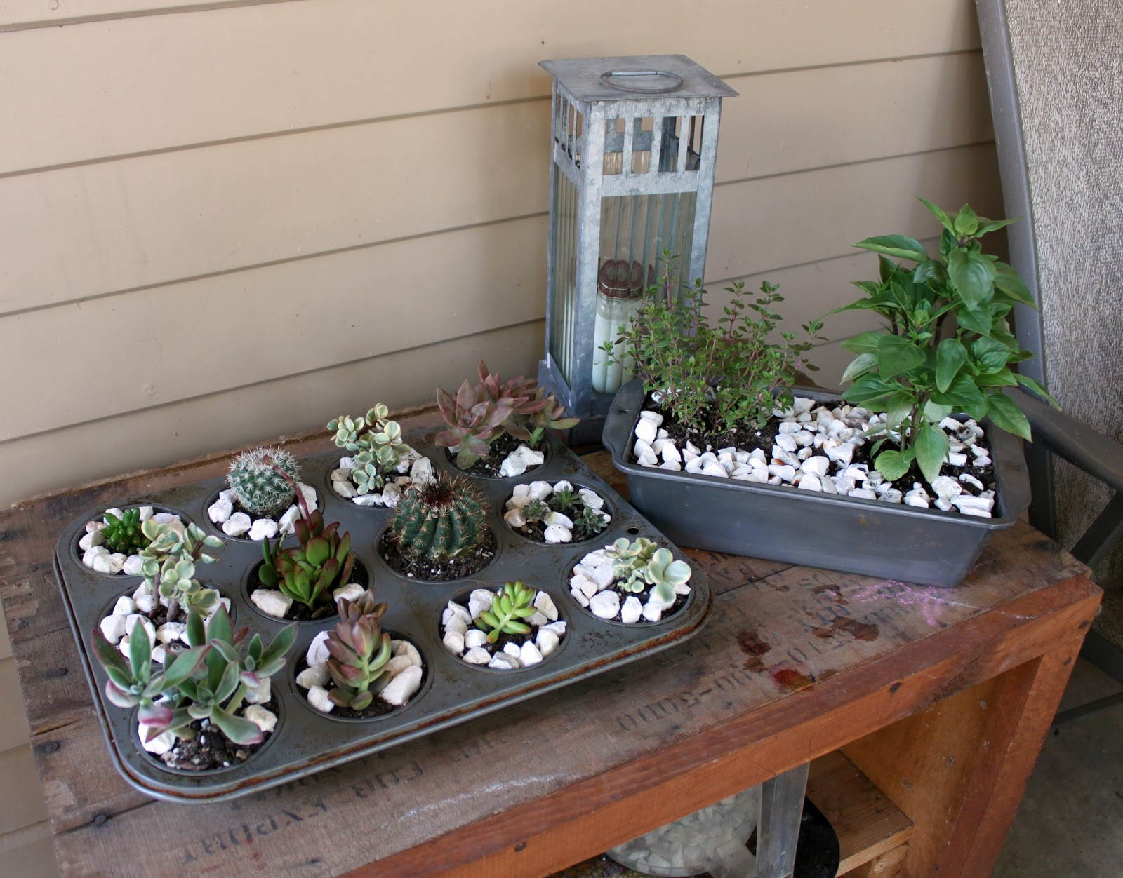 lost little things upcycled succulent planters. Black Bedroom Furniture Sets. Home Design Ideas