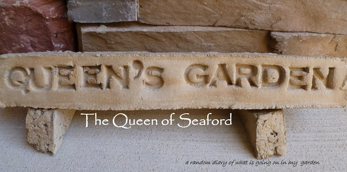 The Queen of Seaford