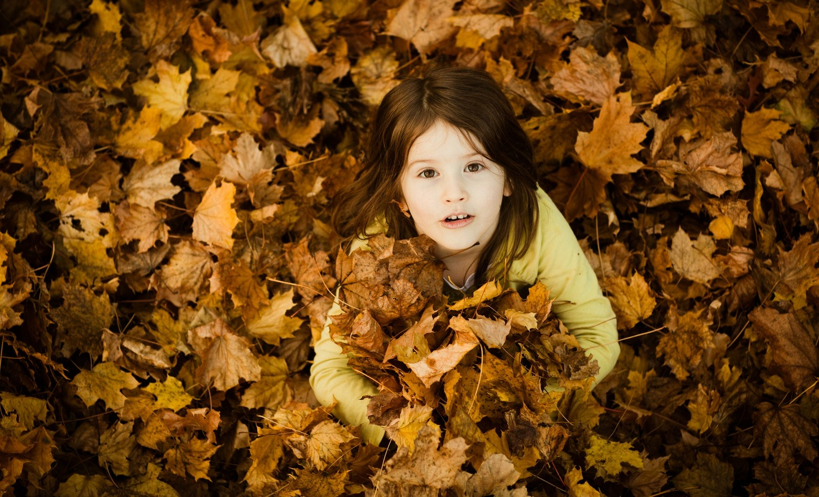 Children girl mood leaves smiling autumn yellow photo hd wallpaper