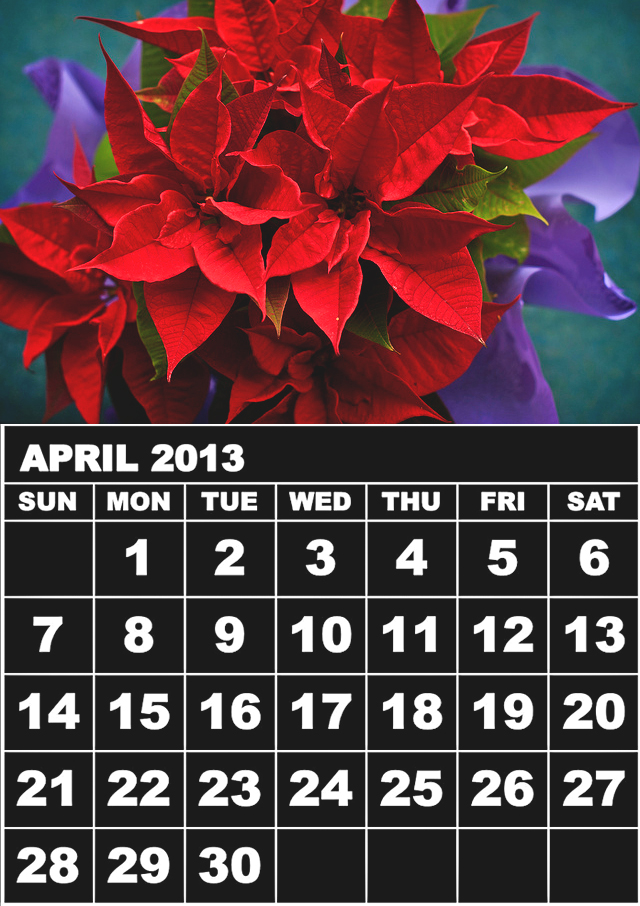 April Rose Calendar : Free printable calendar april with images