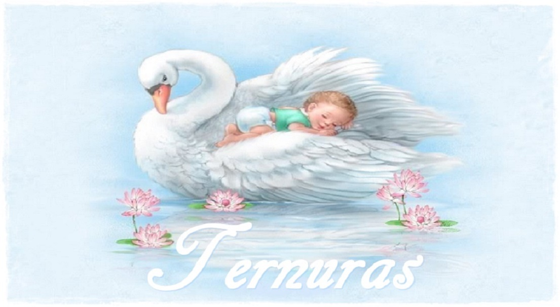 *.*  TERNURAS  *.*