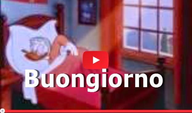 Buona giornata a te video for Video divertenti del buongiorno