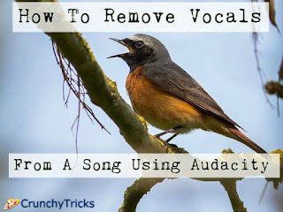 remove vocals from song using audacity