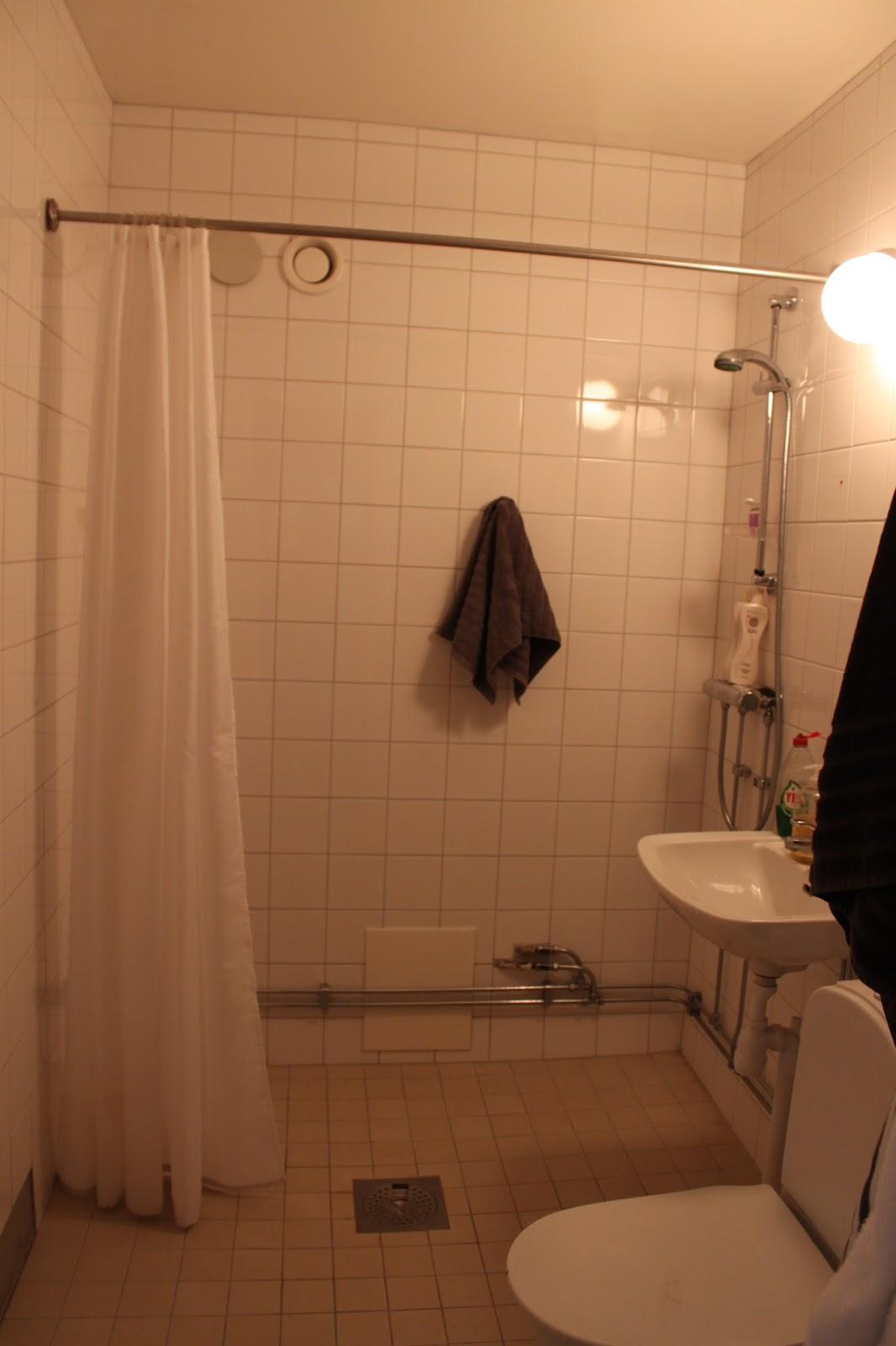 Släng dig i väggen, ernst!: badrumsbeslutsångest de luxe
