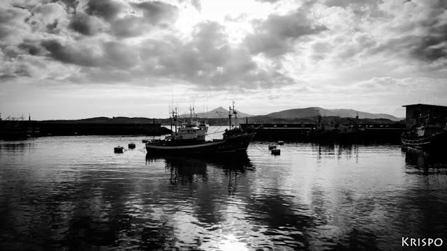 paisaje en blanco y negro desde el puerto de Hondarribia