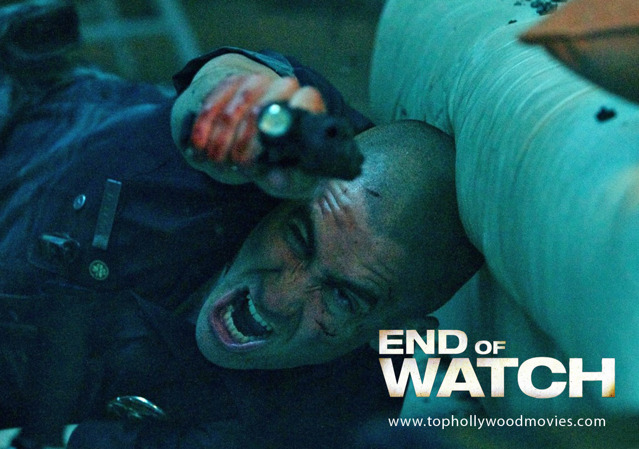 aylmer to zazzoo and beyond end of watch review