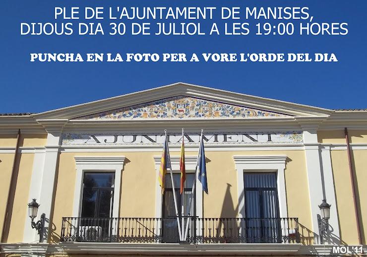 PLENO DEL AYUNTAMIENTO DE MANISES, JUEVES 30 DE JULIO DE 2015