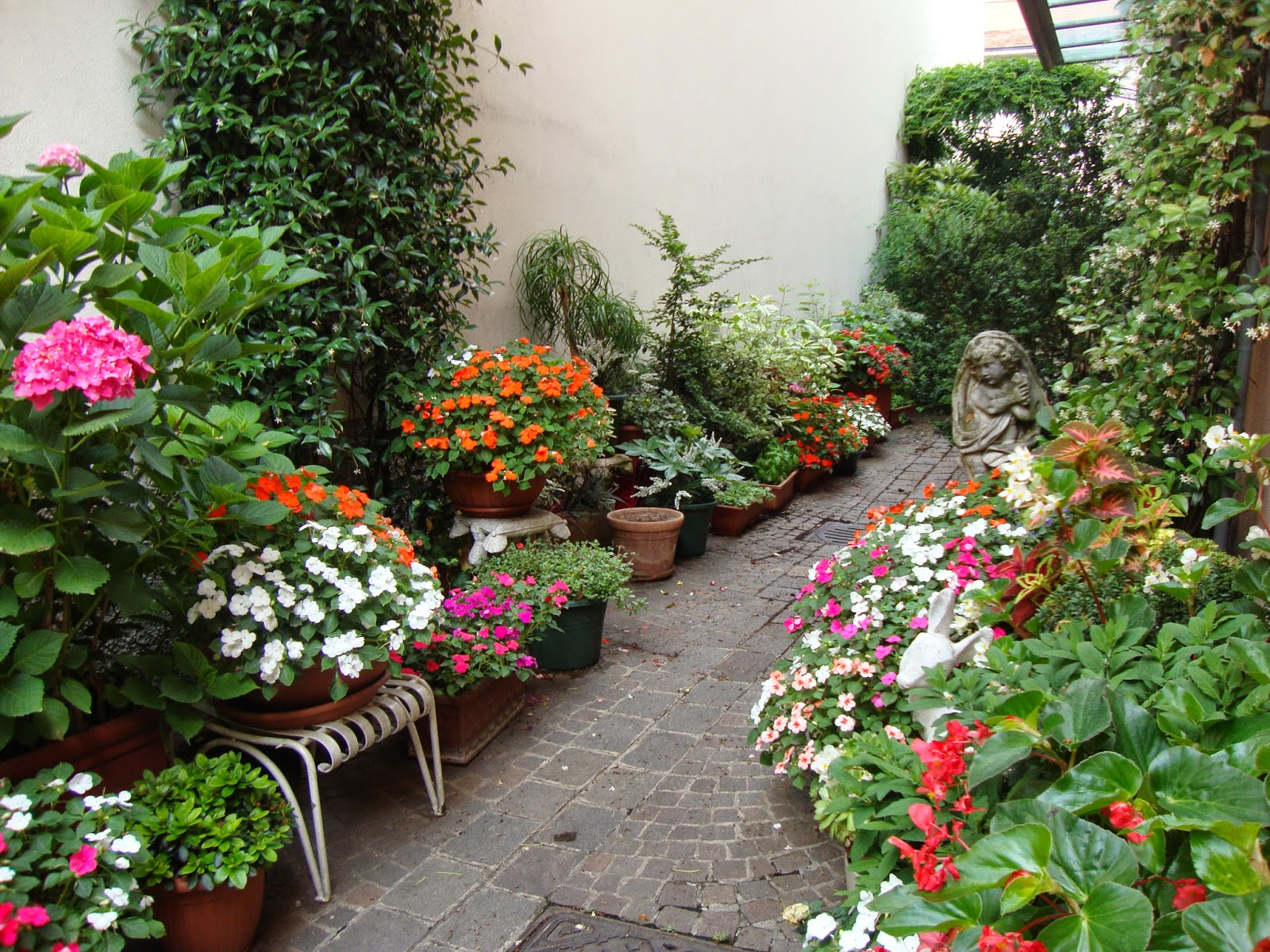 Un piccolo giardino in citt un piccolo giardino in vasi - Vasi in giardino ...