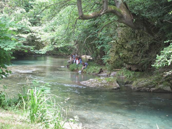 Découverte de la faune et de la flore le long de la rivière