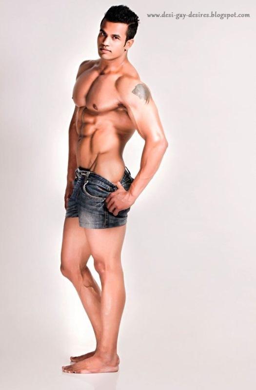 Desi Gay Desires: January 2016