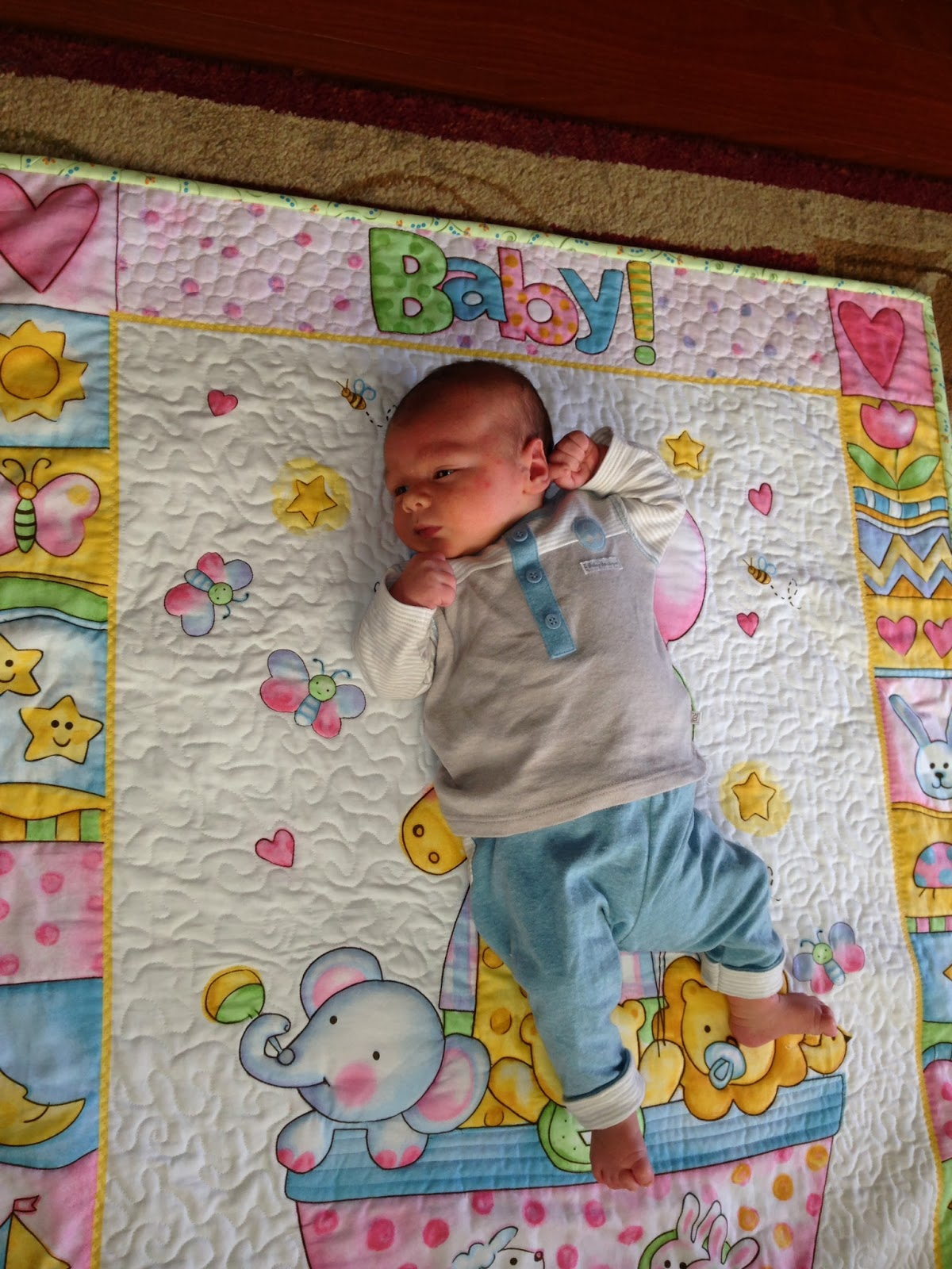 SEW MUCH TO QUILT : TRAPUNTO BABY QUILT : batting for baby quilt - Adamdwight.com