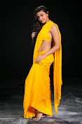 Neelam Upadhyay photos in Yellow saree from Action-thumbnail-13