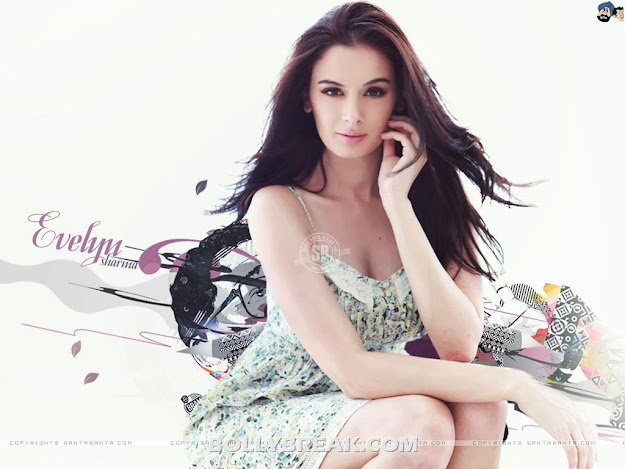 Evelyn Sharma HQ Wallpapers - Evelyn Sharma HD Wallpapers 2012