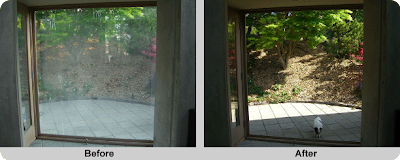 Issaquah wood window glass replacement